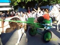 Fotos del Bicentenario_75